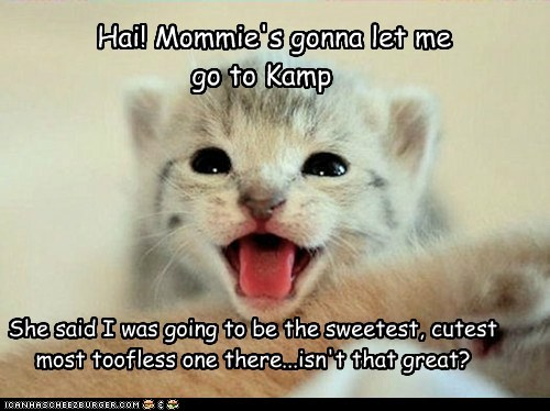 Hai! Mommie's gonna let me  go to Kamp