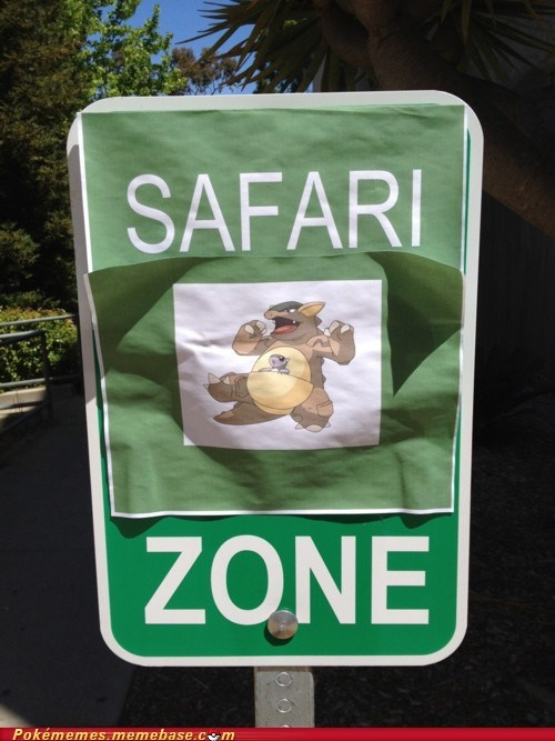 IRL,kangaskhan,safari zone