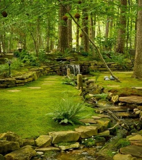 brooke Hall of Fame moss North Carolina stream waterfall - 6256939008