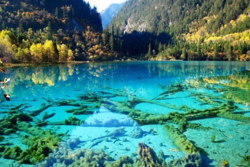 China Forest lake national park turquoise - 6256945408