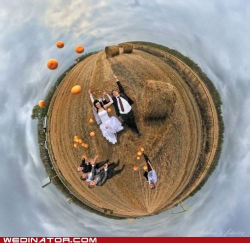 farm funny wedding photos oranges perspective round