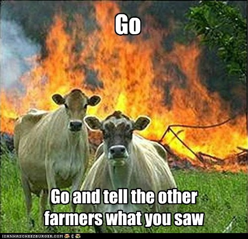 cows evil evil cows farmers fire Hall of Fame Memes - 6257242880