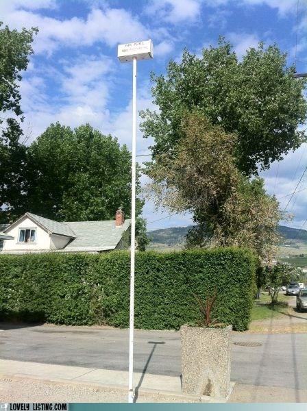 high mailbox pole rude