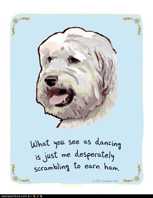 comic dance dogs ham white terrier - 6257819648
