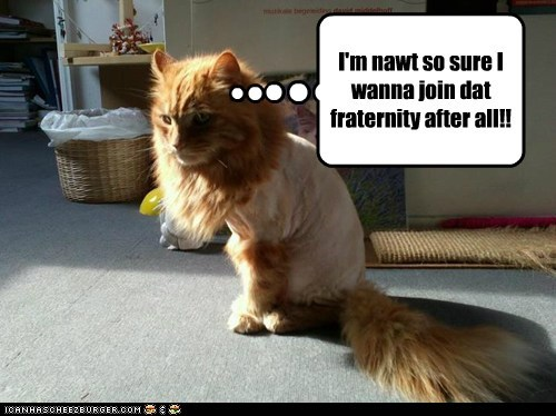 I'm nawt so sure I wanna join dat fraternity after all!!