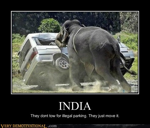 elephant,illegal parking,india,Pure Awesome