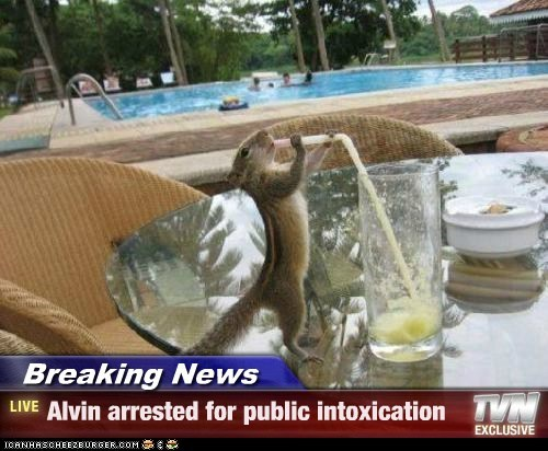 alcohol,Alvin,chipmunk,drinking,intoxication,pool