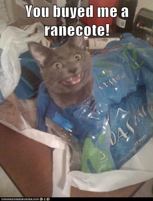 bottled water cat derp for me raincoat - 6258988032