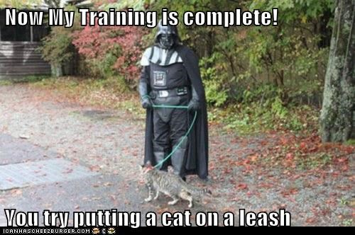 cat complete darth vader difficult leash star wars training walking