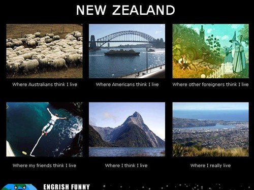 I D Never Live In New Zealand Cheezburger Funny Memes Funny Pictures