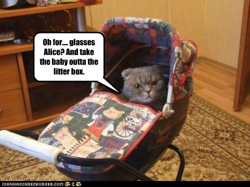 Oh for.... glasses Alice? And take the baby outta the litter box.