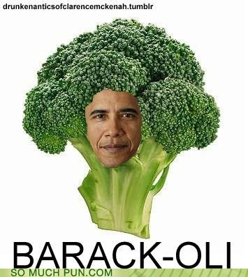 barack obama broccoli Hall of Fame literalism obama prefix similar sounding - 6259497472