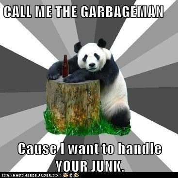 CALL ME THE GARBAGEMAN Cause I want to handle YOUR JUNK.