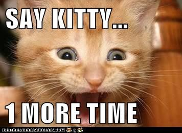 SAY KITTY...  1 MORE TIME