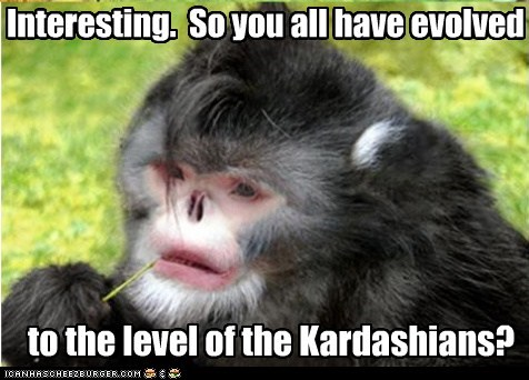 condescending,evolution,interesting,kardashians,monkey,stupid