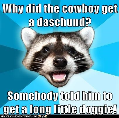 Cowboys dachsunds dogs Hall of Fame jokes lame Lame Pun Coon Memes puns raccoons