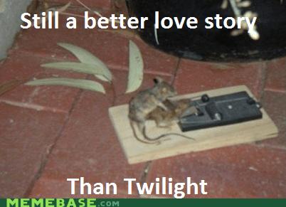 better love story dead Memes mouse mousetrap twilight - 6260015360