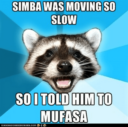 faster Lame Pun Coon lion king Memes mufasa puns raccoons simba slow the lion king - 6260882176