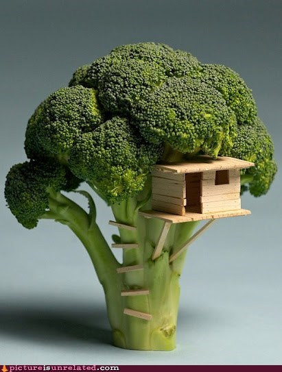 broccoli,tree house,wtf