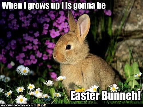 bunny easter flowers rabbit - 6261360128