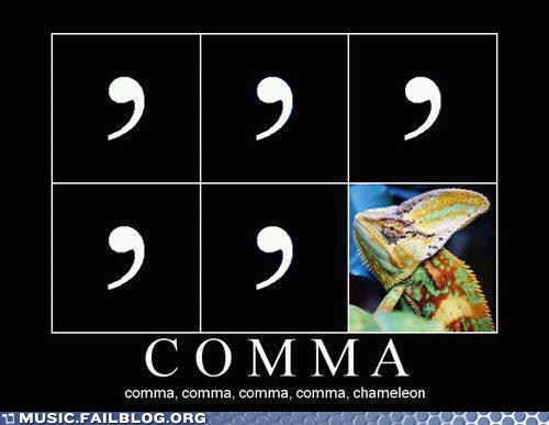 comma demotivational Hall of Fame karma chameleon pun - 6261560064