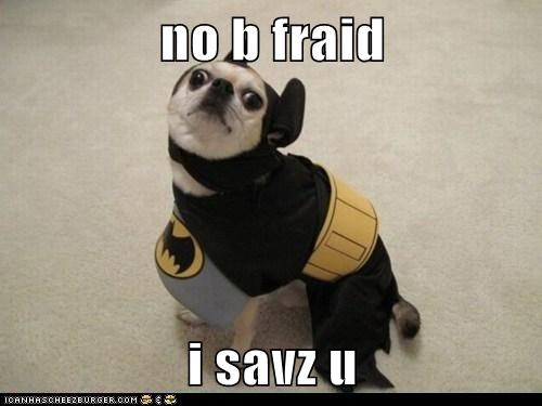 batman,best of week,costume,derp,goggies