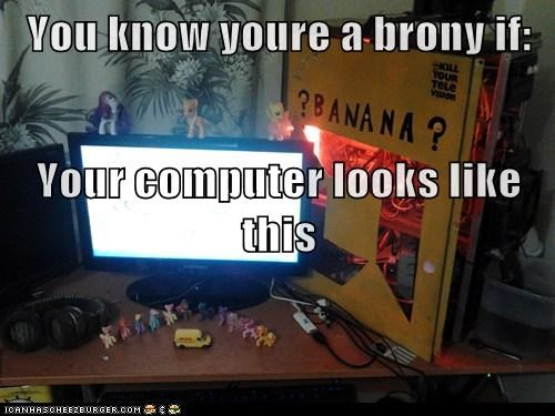 You know youre a brony if: Your computer looks like this