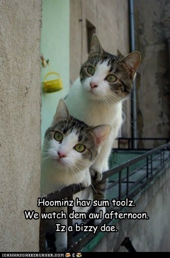 LOLspeak Haiku