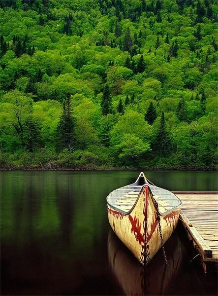 boat canoe Forest lake maine - 6263864832