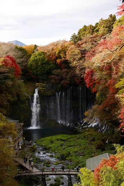 autumn,bridge,Forest,Japan,lake,waterfall