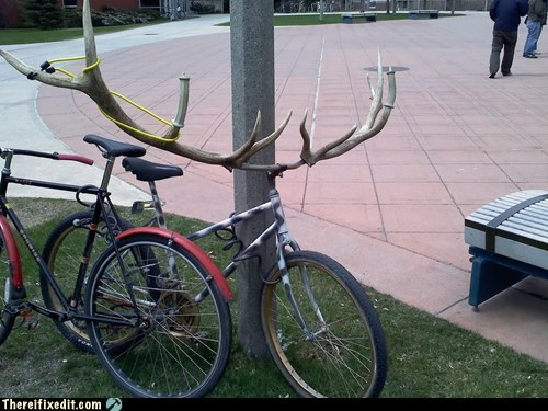 antlers,bike,g rated,moose,there I fixed it