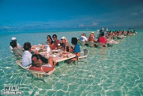 beach dinner restaurant Travel vacation wincation - 6265052416