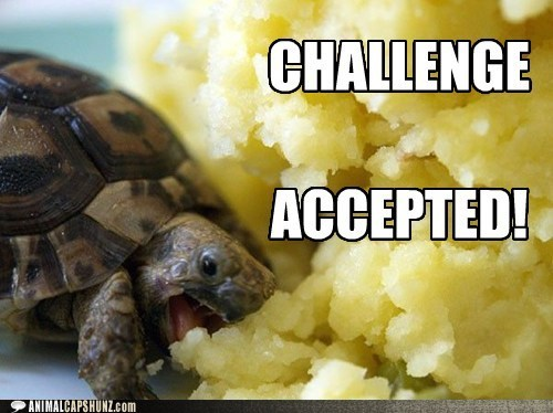 Challenge Accepted eating food happy heaven lots turtle - 6265307392