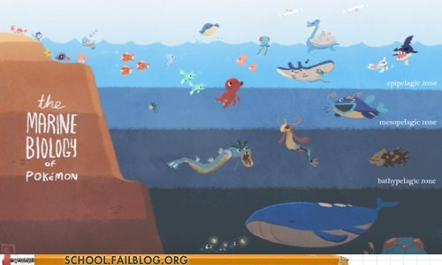 class is in session marine biology Pokémon - 6265932032