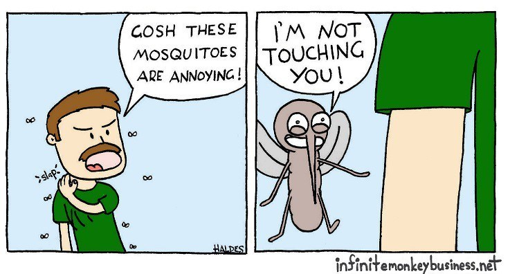 funny comics animal comics animals web comics - 6266117