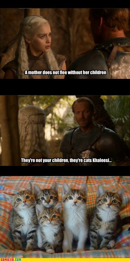 Daenerys Targaryen,Game of Thrones,jorah,kitties,Mother of Dragons,TV