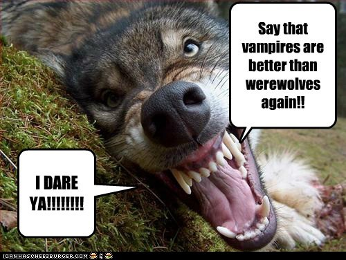 Erm.... No thanks... Say that vampires are better than werewolves again!! I DARE YA!!!!!!!!