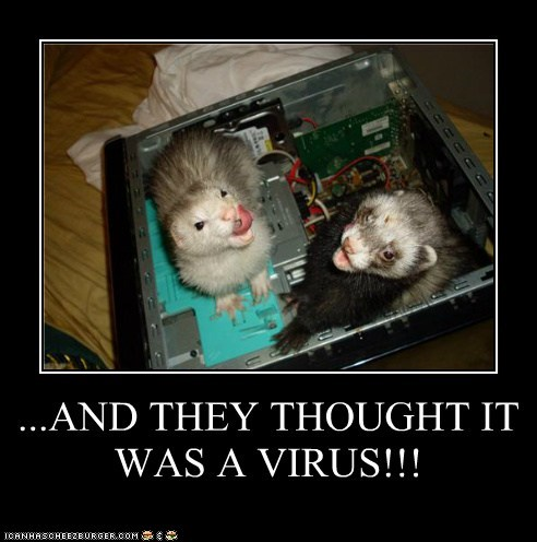 computers ferrets virus - 6267328768