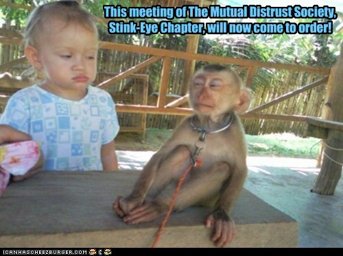 distrust kids meeting monkey monkeys side-eye society stink eye suspicious