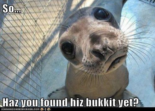 bucket cage seal - 6268160000
