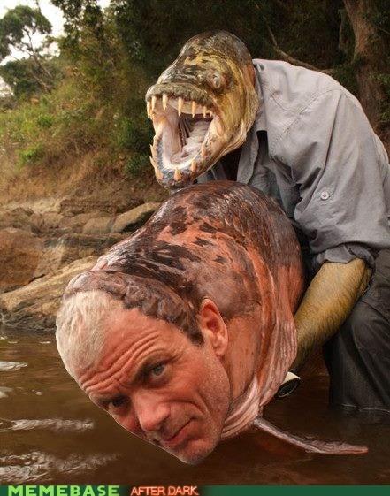 fishing head swap shopped pixels wtf - 6268478464