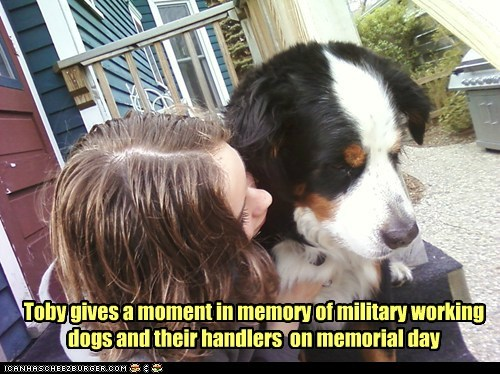 Toby gives a moment in memory of military working dogs and their handlers on memorial day