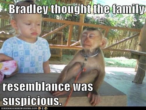 baby,distrust,eyes,family,monkey,resemblance,suspicious