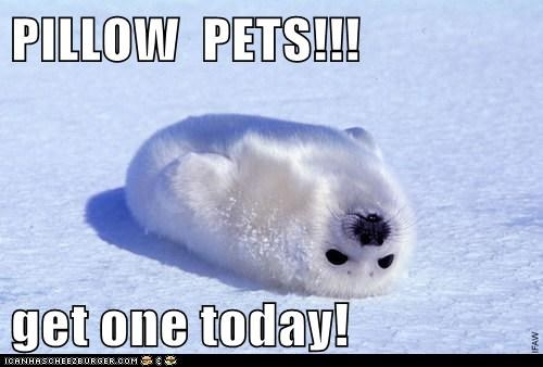 Ad,baby,cute,get one,pillow pet,seal,today