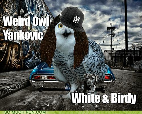 Weird Al Yankovic Hall of Fame literalism Owl similar sounding weird white - 6271535616