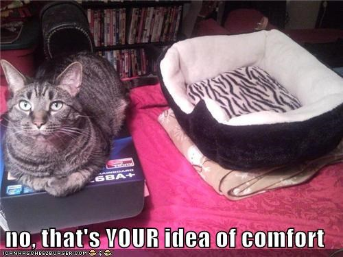 no, that's YOUR idea of comfort