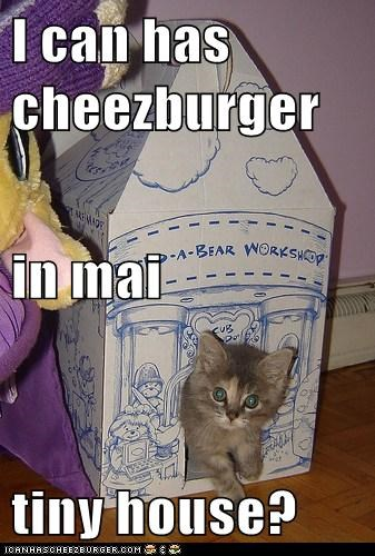 Cheezburger Image 6271994112