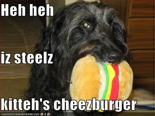 Cheezburger Image 627205888