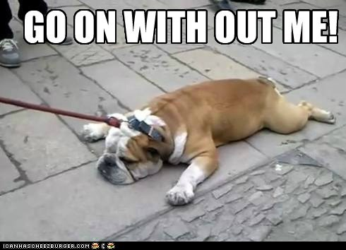 best of the week bulldog bulldogs dogs go on without me Hall of Fame lazy leash leashes sidewalks tired