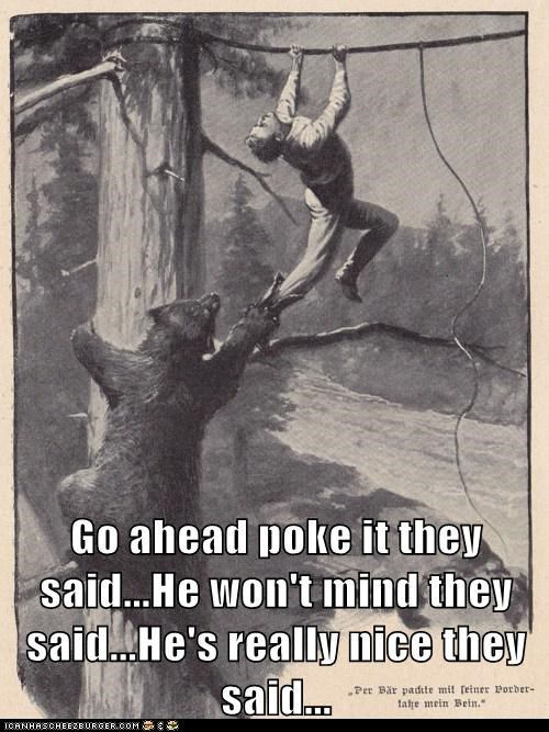 attack bear drawing poke tree - 6273085696